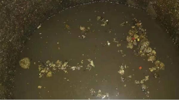 污水池为什么要定期清理